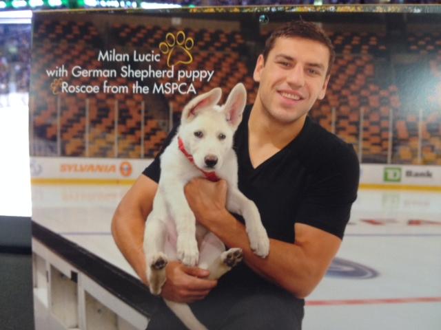Bruins Release Pucks Amp Paws Calendar